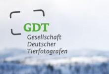 Gesellschaft DeutscherTierfotografen